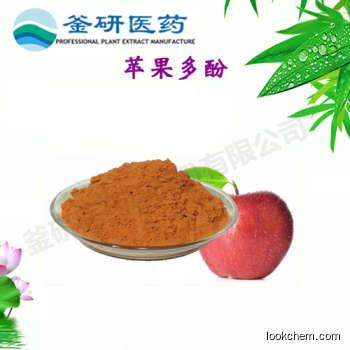 100% Natural Apple Polyphenol health Nutrition High Quality