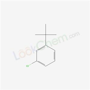 Molecular Structure of 3972-55-2 (1-chloro-3-tert-butyl-benzene)