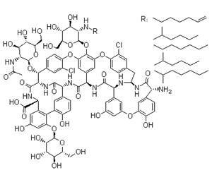 Teicoplanin(61036-62-2)