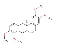 Rotundine(10097-84-4)