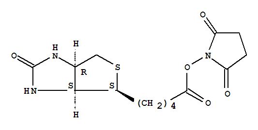 Molecular Structure of 35013-72-0 ((+)-Biotin N-hydroxysuccinimide ester)