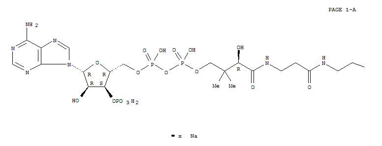 Coenzyme A, Sodium Salt(55672-92-9)