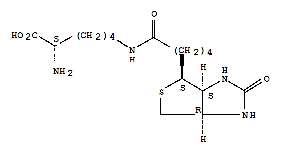 L-Lysine,N6-[5-[(3aS,4S,6aR)-hexahydro-2-oxo-1H-thieno[3,4-d]imidazol-4-yl]-1-oxopentyl]-