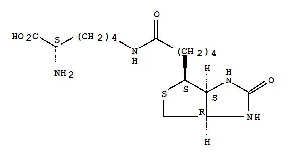 Molecular Structure of 576-19-2 (Biocytin)