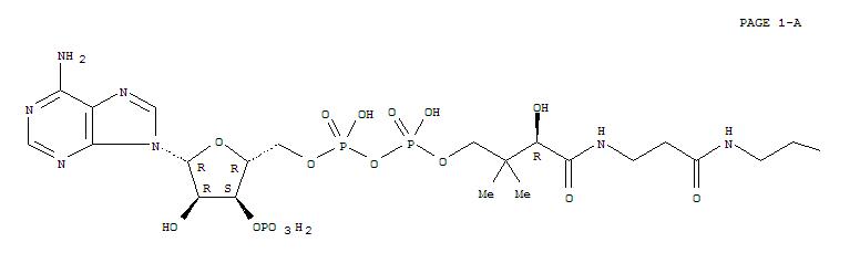 Coenzyme A(85-61-0)
