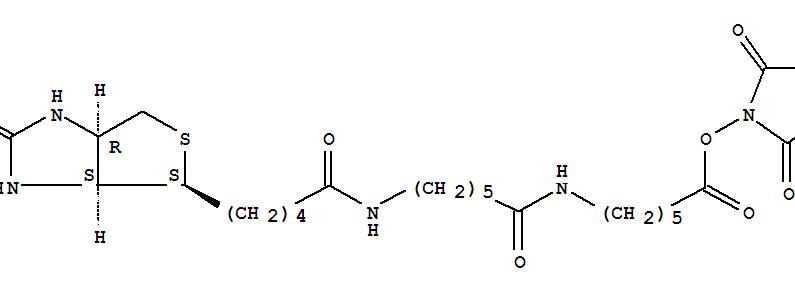 Molecular Structure of 89889-52-1 (1H-Thieno[3,4-d]imidazole-4-pentanamide,N-[6-[[6-[(2,5-dioxo-1-pyrrolidinyl)oxy]-6-oxohexyl]amino]-6-oxohexyl]hexahydro-2-oxo-,(3aS,4S,6aR)-)