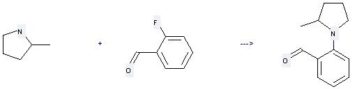 2-Methylpyrrolidine can be used to produce 2-(2-methylpyrrolidinyl)benzaldehyde at the temperature of 152 °C