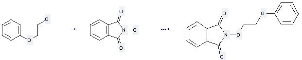 2-Phenoxyethanol can be used to produce N-(2-phenoxyethoxy)phthalimide at the ambient temperature