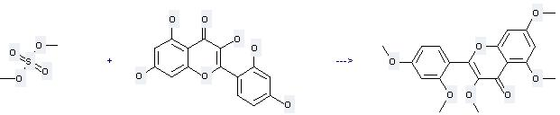 4H-1-Benzopyran-4-one,2-(2,4-dihydroxyphenyl)-3,5,7-trihydroxy- can be used to produce 2-(2,4-dimethoxy-phenyl)-3,5,7-trimethoxy-chromen-4-one by heating