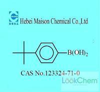 4-tert-Butylbenzeneboronic acid(123324-71-0)
