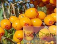 Sea berry fruit oil,seabuckthorn fruit oil()
