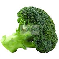 Broccoli Seed Extract