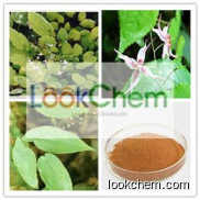 High quality Epimedium P.E. 98% Icariin