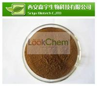 Horse Chestnut extract with 20% Aescin