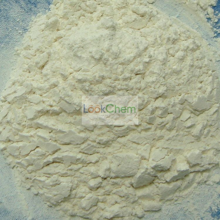 2,3-Dichloroquinoxaline professional manufacturer in China(2213-63-0)