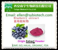 Acai berry extract/juice powder