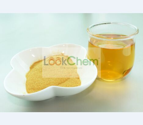 Instant Green Tea Extract Powder(12-00-0)