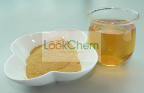 Instant White Tea Extract Powder(12-00-0)