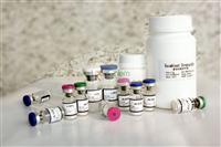 Protein G Test Kit