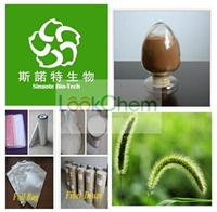 Pure Natural 7% 8% Silica Horsetail Extract