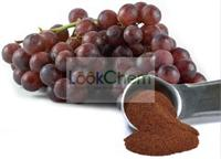 Natural Grape Skin Extracts Resveratrol 5%~98% HPLC