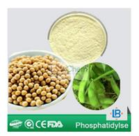 LGB high quality 20%,50% PS phosphatidylserin powder for brain memory CAS NO.8002-43-5  phosphatidylserin(8002-43-5)