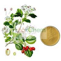 Epimedium Leaf Extract,Herba Epimedii Extract,Icariin Extract 5%-98%(489-32-7)