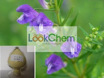 Herb Medicine Baicalin Baical Skullcap Root P.E.
