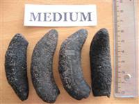 se acucumbers patallus mollis Dried(50-00-0)