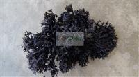 seaweed irish moss Dried(50-00-0)