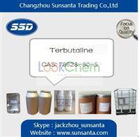 High purity Terbutaline 99%min supplier(78628-80-5)