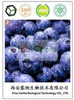 Factory supply 100% natural Acai berry extract 10:1/acai berrypowder/acai berry powder organic