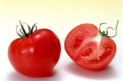 best quality and favorable price of lycopene supplier