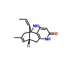 Huperzine A(102518-79-6)