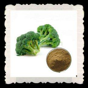 Professional factory high purity DL-Sulforaphane