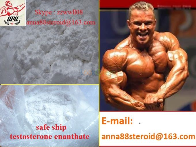 High Quality Muscle Building Steroid Anabolic /Testosterone Enanthate Steroids(5721-91-5)