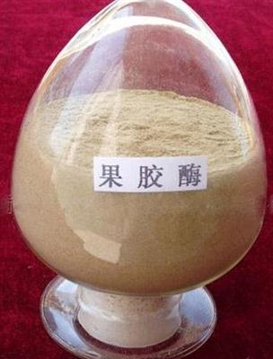 Neutral Cellulase(Powder & Liquid), CAS No.: 9032-75-1