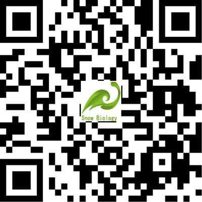 Top Supplier Dimethylmercury 95%