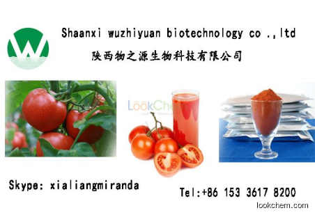 best selling Tomato Extract Lycopene hot sale