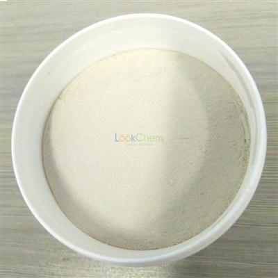 Carboxymethyl cellulose