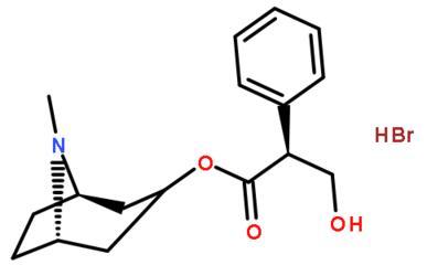 HYOSCYAMINE HYDROBROMIDE