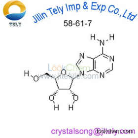 Adenosine High Purity Reagent in Low Price CAS 58-61-7