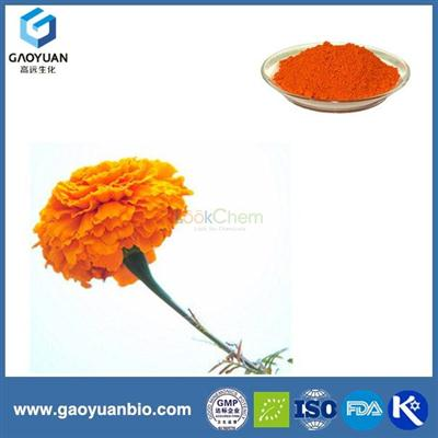 Online shopping lutein 10% from marigold flower was supplied by ISO certified manufacturer xi'an gaoyaun