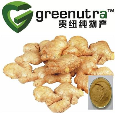 Ginger Extract(84696-15-1)