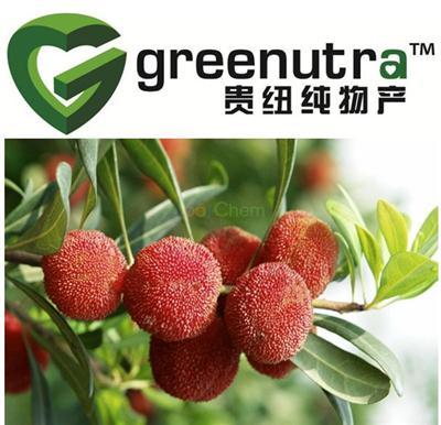 100%natural Myrica Rubra Extract,Manufacturer Myrica Rubra Extract,Manufacturer Supply High Quality Myrica Rubra Extract
