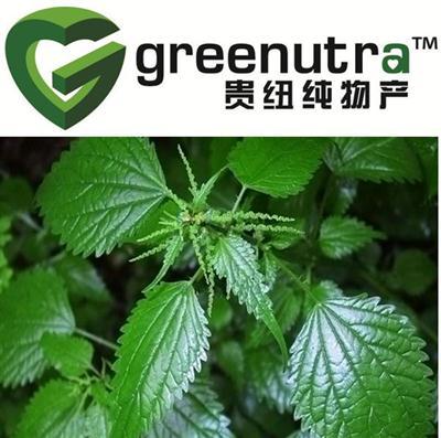 Nettle seed extract