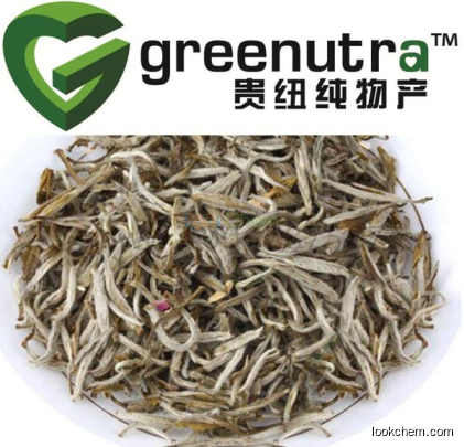 White Tea Extract powder