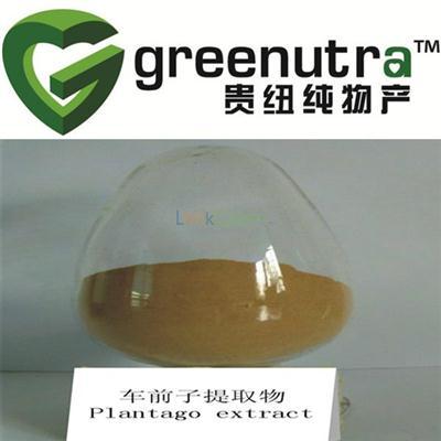 Pure Plantago Psyllium Extract,GMP Manufacturer supply Plantago Psyllium Extract,Dried Plantago Psyllium Extract