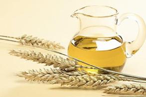 wheat germ oil(68917-73-7)