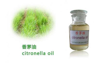 Purity citronella oil